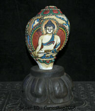 "9.2"" Tibet Buddhism Conch Shell Trumpet Horn Painting Shakyamuni Buddha Statue"