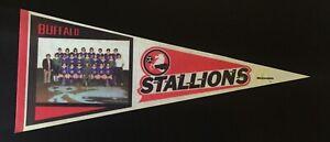Buffalo Stallions Soccer Pennant
