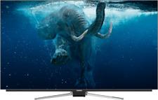 Grundig 55 Gob 9990 FineArts OLED 55zoll 4k UHD SmartTV mit Hbb-tv Bremen
