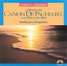 Musica Del Canon De Pachelbel Borde Del Mar