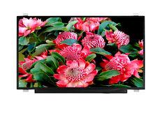 """Premium DISPLAY 17.3"""" LED HD+ AG LCD SCREEN  BOE NT173WDM-N21 eDP"""