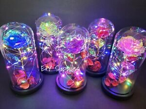 Eternal Rose Flower LED Enchanted Galaxy Rose Girlfriend Valentine's Gift