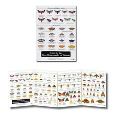 Guide to the Day Flying Moths of Britain Laminated Fold out Identification Chart