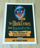 THE BLACK CROWES  : SHAKE YOUR MONEY MAKER  : A4 GLOSSY REPRODUCTION POSTER