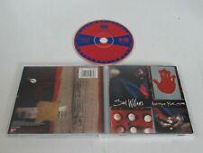 SAUL WILLIAMS/AMETHYST ROCK STAR(AMERICAN 501593 2) CD ALBUM