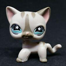 Littlest Pet Shop LPS #468 Grey Gray Short Hair Cat Stripe Flower Eyes / Chat