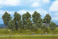 Bäume Sommer 10 Stück 10 - 14cm hoch Noch 24205