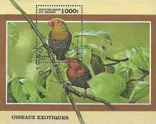 Timbre Oiseaux Bénin BF51 o lot 3415
