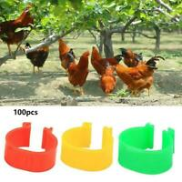 100X 16mm Colour Clip On Leg Band Rings For Chickens, Poultry Ducks, Hens, O0X4