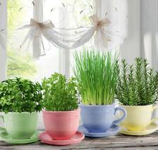 Cachepot Ceramic Planter Yellow Teacup Shaped Clay Plants Pot