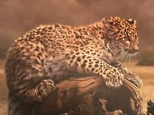 Charles Frac'e ( Leopard Cub ) Signed Lithograph print# 361 Frame House Gallery