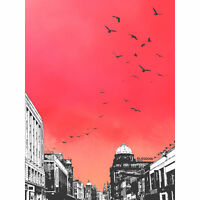 Rooftop Birds Glasgow Large Canvas Wall Art Print 24X32