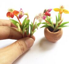 5 x Lady Slipper Orchid Mini Clay Flowers Plant Miniature Dollhouse Fairy Decor
