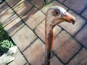 Natural wood walking stick with bird of prey handle eagle glass eyes