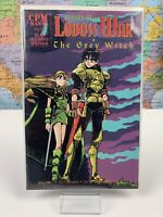SHIPS SAME DAY RECORD OF LODOSS WAR: THE GREY WITCH #17 Comics Book