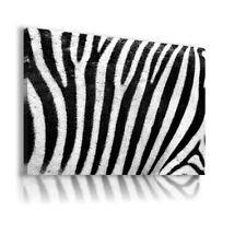 ANIMALS WHITE BLACK ZEBRA STRIPES CANVAS Wall Art Picture  AB40  MATAGA