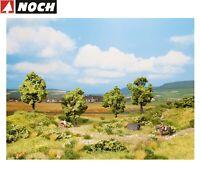 NOCH 21001 PROFI Obstbaum grün, 7,5 cm hoch (4 Stück) - NEU + OVP