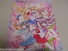 Doujinshi Strawberry candle Sailor Moon ARINA TANEMURA illustration (B5 36pages)