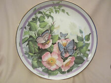 Common Blue collector plate Butterfly Garden Paul Sweany Beautiful