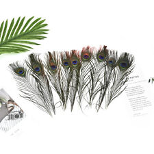 10Pcs Natural Peacock Tail Feathers for Wedding Festival Party Home Decoration