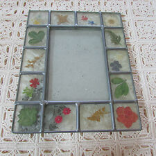 Vtg. Nice Leaded glass Frosted Dried Pressed Flowers Botanical Picture Frame