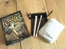 DIG YOUR OWN FOSSILS BOX SET AMMONITE  SHARKS TOOTH CRINOID BRACHIPOD GEOLOGY