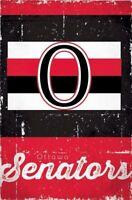 OTTAWA SENATORS ~ SCRATCH LOGO 22x34 POSTER NHL National Hockey League