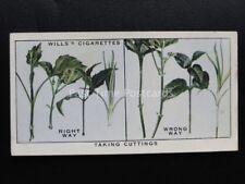 nr. 45 hebt Stecklinge Garten Hinweise - Wills 1938