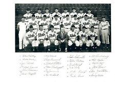 1949 SYRACUSE CHIEFS 8x10 TEAM PHOTO BASEBALL NEW YORK TONS OF MAJOR LEAGUERS!!!