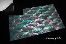 Donkey Ear Coated Enhanced Adhesive Veneer Sheet (Shell Inlay Abalone Lure)