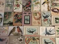 Nice ~Lot of 25 Antique Greetings Postcards with *BIRDS~Bird-in sleeves-s-996
