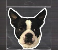 Boston Terrier 5 inch face magnet for anything metal