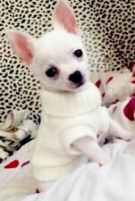 PUPPY COAT TINY XXXS Chihuahua  White Knit Coat Pet Clothes Dog Teacup