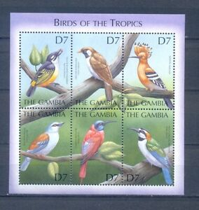 GAMBIA BIRDS OF TROPICS     MNH
