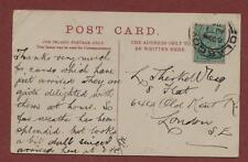 L Thirkell. 644 Old Kent Road, London  postcard db84