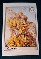 CICELY MARY BARKER FLOWER FAIRIES POSTCARD, THE GORSE FAIRIES, FLOWER ALPHABET