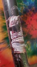 "Chicago Bulls ""70"" Wins Poster New sealed"