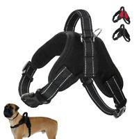 Nylon Padded Dog Harness Martingale Vest for Small Medium Large Dogs Training