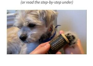 Dog Paw Balm Guard Paws Dry Healing Cracked Irritated Pads