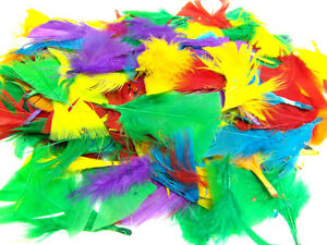 Multi Coloured Feathers Large & Small Fluffy Childrens Kids Arts and Craft