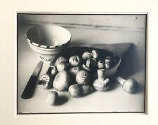 """Vintage Photograph Still Life Mushrooms 6 x 7 1/2"""""""