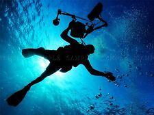 FLORA DIVER OCEAN MARE SILHOUETTE sole grandi poster art print bb3108a