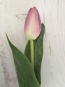 3 stems of silk tulip mauve