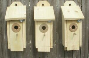 Custom Bird Houses easy open  with Squirrel proof opening.