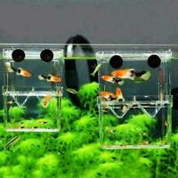 Aquarium Fisch Zucht Box Garnelen Brüterei Fisch Tank Inkubator Isolation s A2Q6