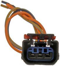 Turn Signal Light Connector-Lamp Socket Dorman 645-187