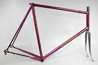 Colnago Rennrad Stahl-Rahmen, Columbus Thron Super, RH-65cm (74)