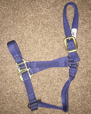 Weaver Navy Blue Nylon Small Horse Size 500-800lb Adjustable Halter Snap Buckle