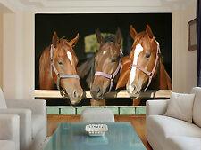 HQ Wall Mural Stable Horses Photo Wallpaper Decoration Living Room Kids Art 92
