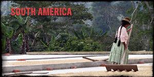 5 lbs Bolivian Organic Fair Trade Coffee Beans, Fresh Green Unroast Coffee Beans